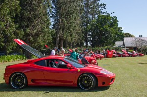 Ferraris lined up on the lawns